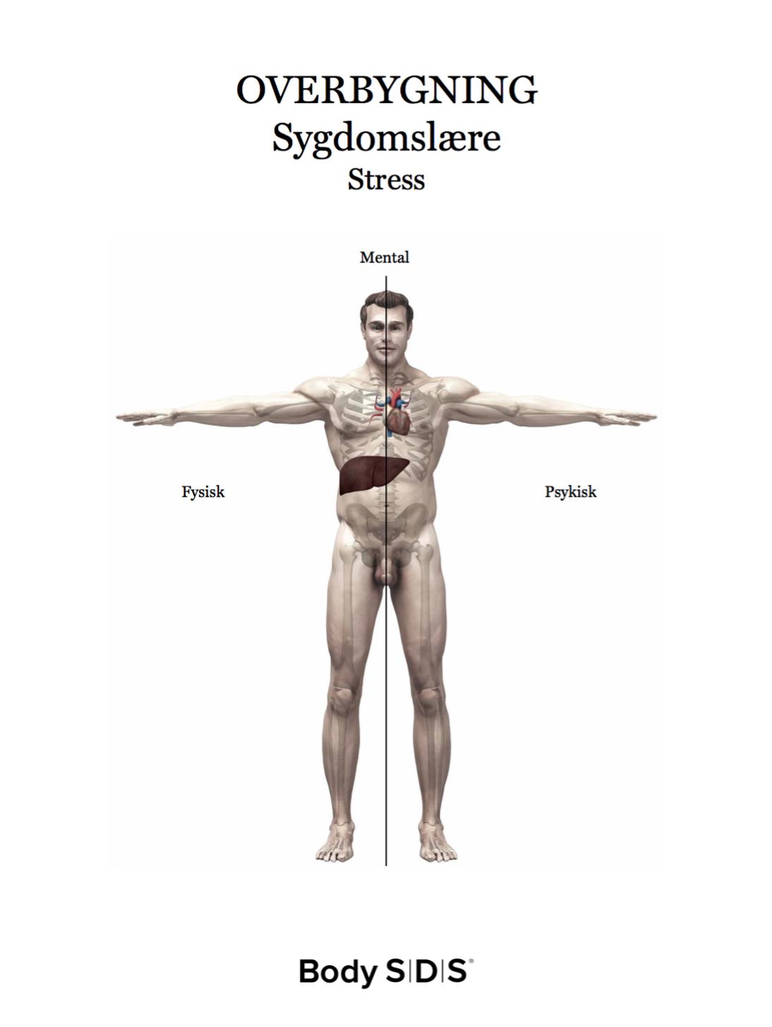 psykosomatiske symptomer stress